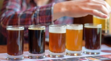 Professional Beer Tasting and Styles course